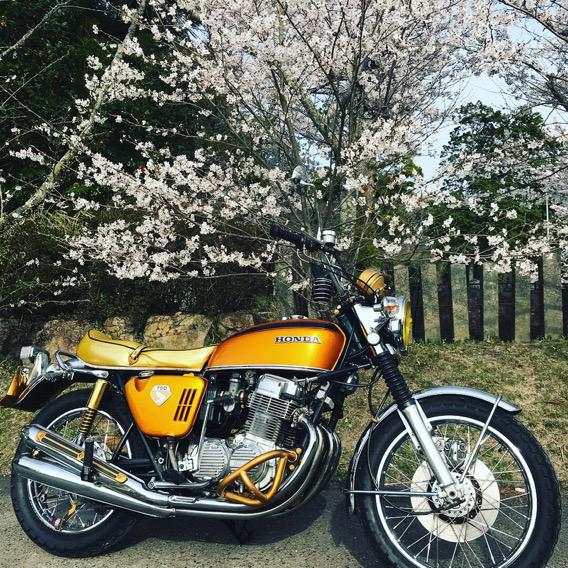 春の季節を感じて。