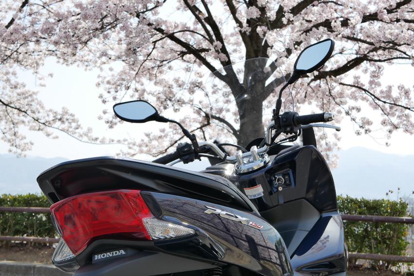 桜とPCX