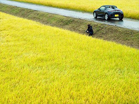 Honda Advanced Design Studio Tokyo