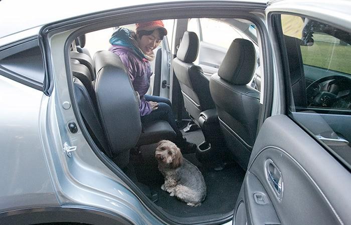 Honda Dog|わんこにやさしいクルマ|VEZEL(ヴェゼル)