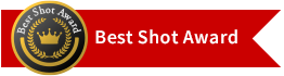 Best Shot Award