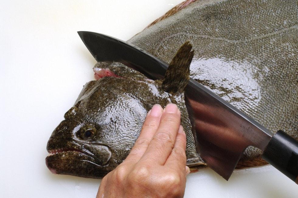 釣り は 身 を 滅ぼす