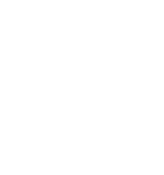 Me and Honda Around the World