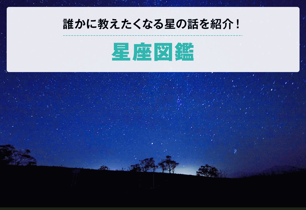 星座図鑑】見つけ方や誰かに教えたくなる星の話 | Hondaキャンプ | Honda